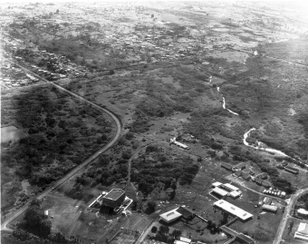 Aerial View Hilo - 1960