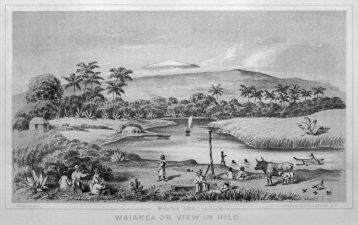 View from Hilo to Mauna Loa - 1854