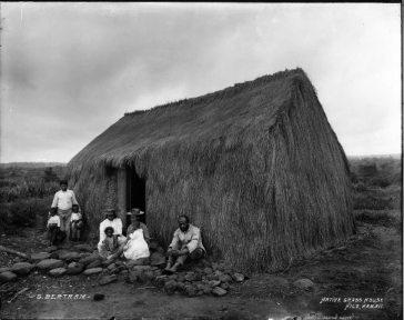 Hilo Grass House - Hilo